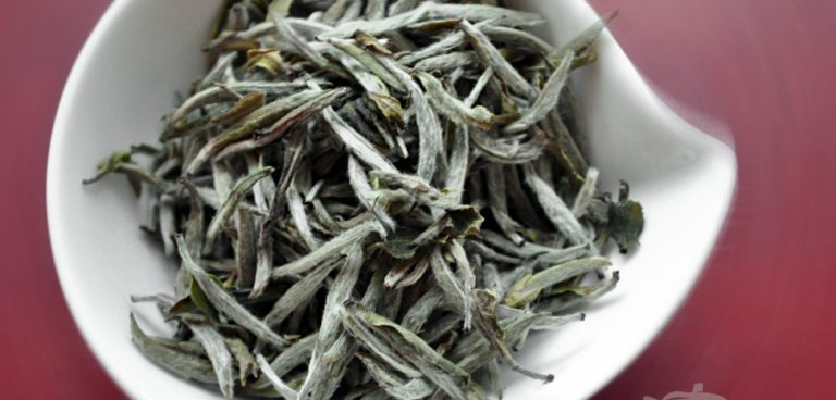 Silver Needle White Tea hairy Buds