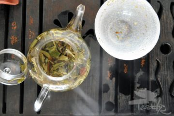 Tea Leaves in Water