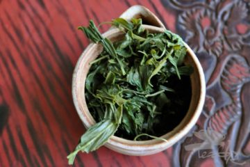 Used Sencha Open Leaves